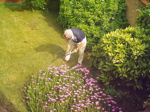 Maison et jardin : devenez auto-entrepreneur