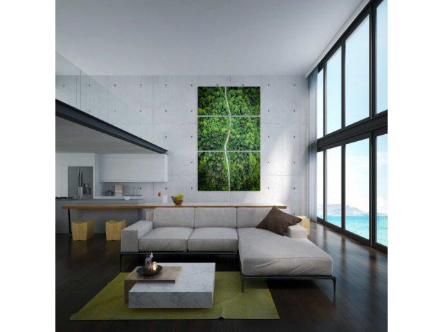 Habiller un mur, avez-vous songé à un tableau photo d'art ?