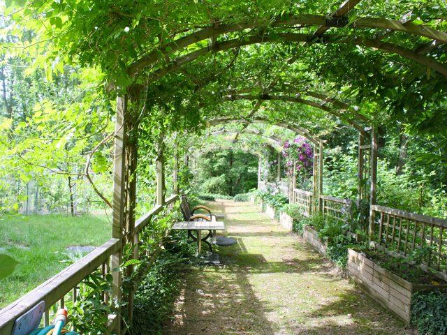 Aménager une pergola dans son jardin